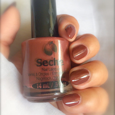 Seche Chocolat Swatch by Demi