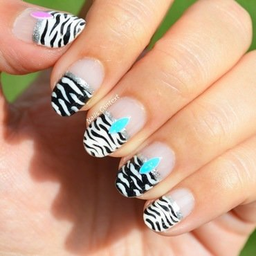 Zebra 20nails 2001 thumb370f