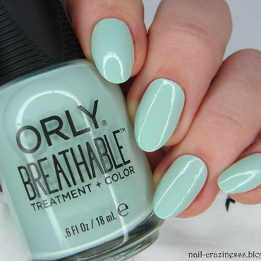 Orly Fresh Start Swatch by Nail Crazinesss