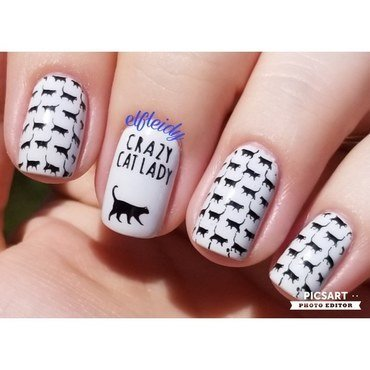 Crazy cat lady nail art by Jenette Maitland-Tomblin