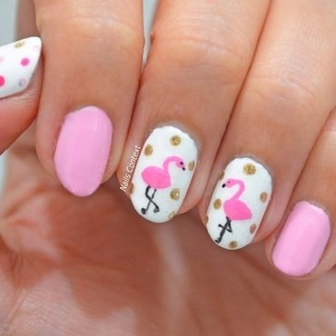 Flamingo 20nails 2001 thumb370f