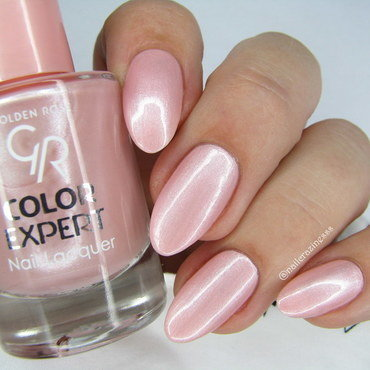 Golden Rose Color Expert 142 Swatch by Nail Crazinesss