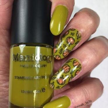 Pumpkins and Gourds nail art by NinaB
